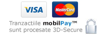plata online cu Visa si Mastercard